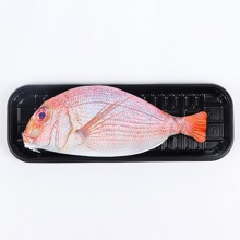 INOpets.com Anything for Pets Parents & Their Pets Fish Shaped Pencil Case