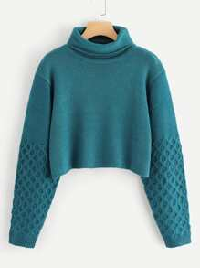 Rolled Up Neck Solid Crop Jumper