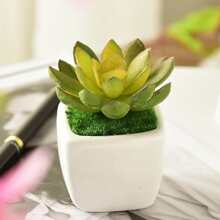 Artificial Succulent Plant With Ceramic Pot
