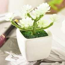 Artificial PU Plant With Ceramic Pot