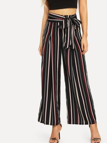 Fold Pleat Belted Striped Palazzo Pants