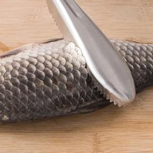 INOpets.com Anything for Pets Parents & Their Pets Handle Fish Scale Scraper