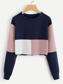Colorblock Crop Sweatshirt