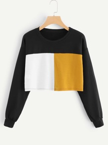 Color Block Crop Sweatshirt