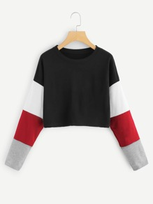 Cut And Sew Sleeve Crop Pullover