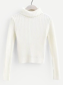 Plain Rib Knit High Neck Sweater