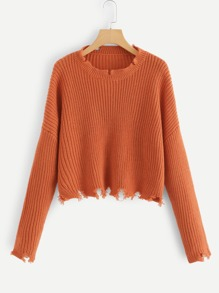 Solid Raw Hem Crop Sweater