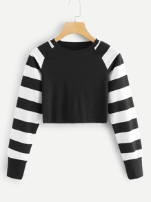 Striped Panel Crop Tee