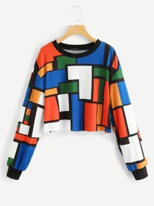 Geometric Print Crop Sweatshirt