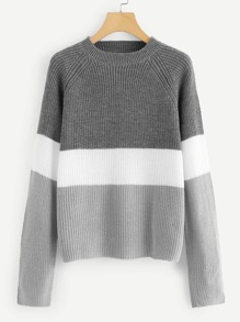 Plus Raglan Sleeve Colorblock Sweater