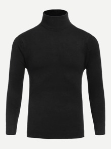 Men Turtleneck Solid Jumper