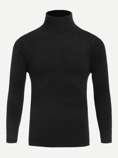 Men Turtleneck Solid Sweater