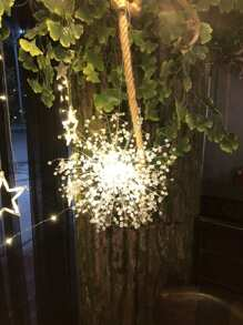 Crystal Ball Decor Dandelion LED Light 12V