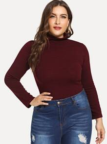 Plus Slim Fitted High Neck Sweater