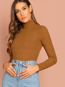 Turtle Neck Rib Knit Solid Top