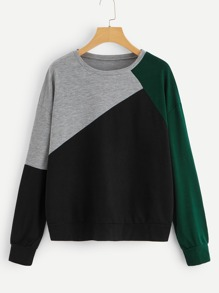 Cut And Sew Drop Shoulder Sweatshirt