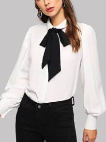Bishop Sleeve Tie-neck Blouse