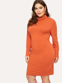 Plus Rolled Neck Long Sleeve Pencil Dress