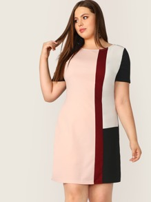 Plus Colorblock Tunic Dress