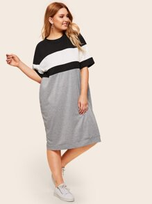 Plus Cut And Sew Panel Dress