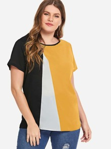 Plus Cut And Sew Panel Blouse