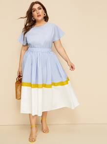 Plus Solid Top & Colorblock Skirt Set