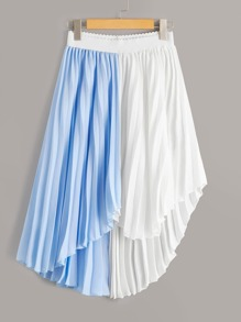 Two Tone Pleated Asymmetrical Skirt
