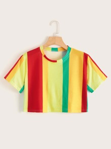Colorful Stripe Crop Tee