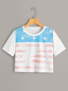 Stars And Stripes Print Crop Tee