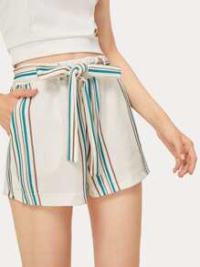 Striped Panel Belted Shorts