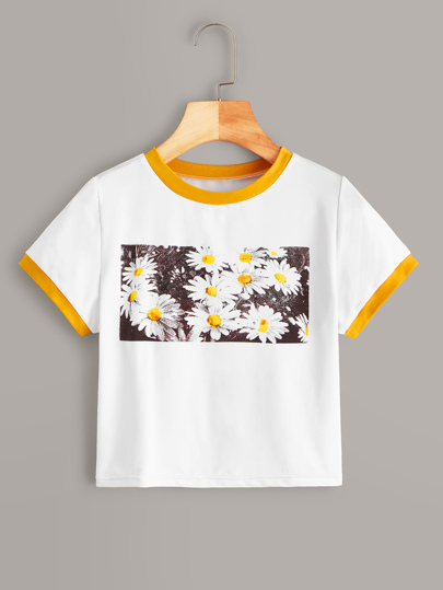 62adb34ba429 T-shirts & Tees |T-Shirts for Women - Buy Stylish Women's T-Shirts ...