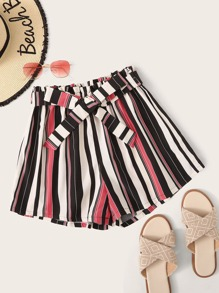 Striped Wide Leg Belted Shorts