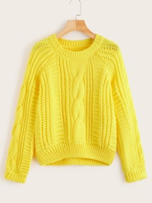 Solid Cable-knit Raglan Sleeve Jumper