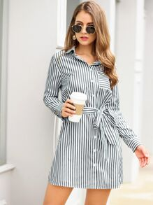 Vertical-Striped Belted Shirt Dress