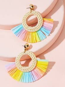Colorful Fan Tassel Drop Earrings 1pair