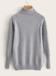 Solid High Neck Raglan Sleeve Sweater