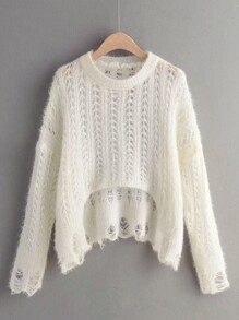 Shaggy Raw Hem Pointelle Knit Sweater