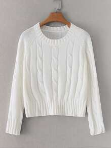 Raglan Sleeve Twist Cable Knit Sweater