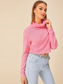 Ribbed High Neck Solid Jumper
