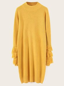 Funnel Neck Fringe Sleeve Sweater Dress