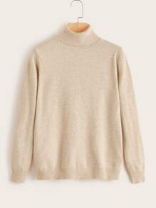 Plus Solid High Neck Sweater