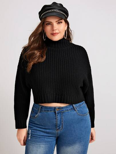Plus Solid High Neck Crop Jumper