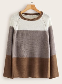 Cut And Sew Raglan Sleeve Sweater