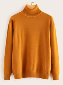 Solid Turtleneck Long Sleeve Jumper