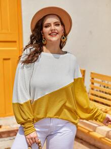 Plus Two Tone Batwing Sleeve Sweater