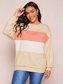 Plus Colorblock Drop Shoulder Jumper