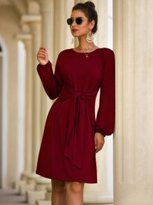 Solid Blouson Sleeve Tie Front Dress
