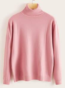 Solid Turtleneck Long Sleeve Sweater