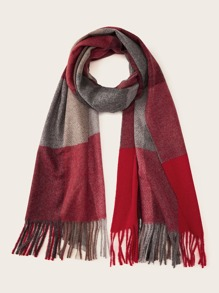 Color Block Fringe Hem Scarf