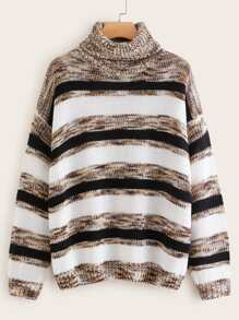 Plus Striped Space Dye Turtleneck Sweater